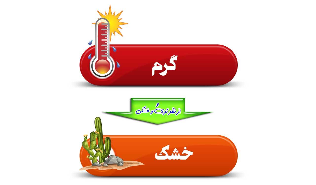 توصیه ها و محدودیت های غذایی مزاج گرم و خشک (صفراوی)
