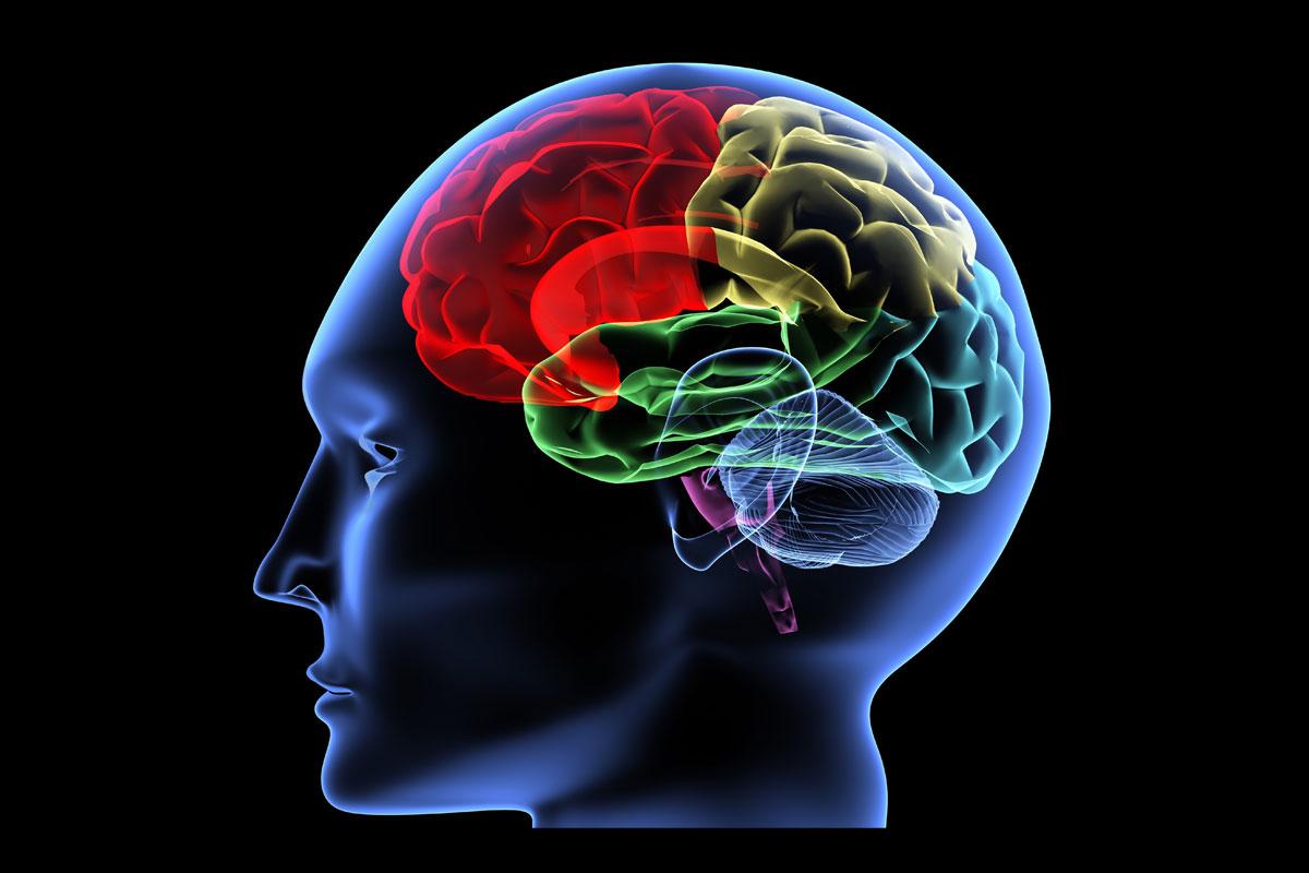 مروری بر شاخص های تعیین مزاج دماغ در پزشکی ایرانی