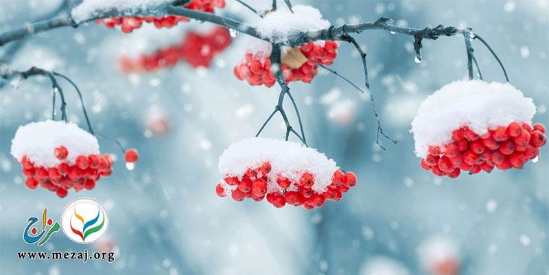 نکات طلایی برای حفظ سلامتی در فصل زمستان چیست؟